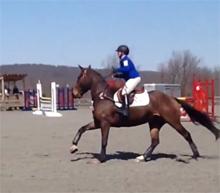 2013 Morven Spring Horse Trials