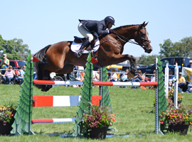 2013 Richland Park CIC***, Stadium Jumping